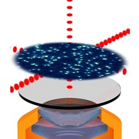 Single-atom imaging
